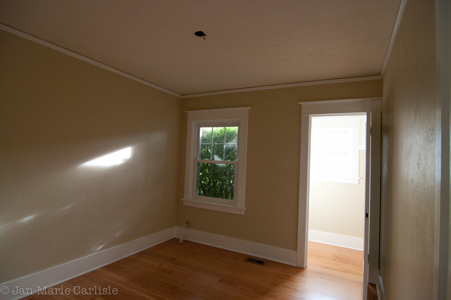 Refinished Floors And New Paint Bungalow Blooming