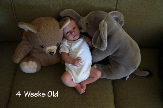 DSC02900 4 weeks