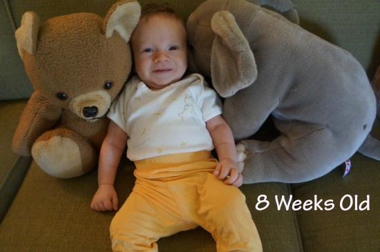 DSC03184 8 weeks