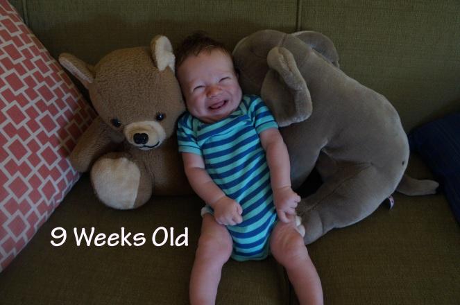 DSC03334 9 weeks