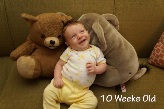 DSC03543 10 weeks