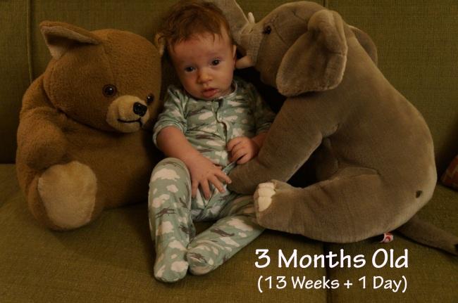 DSC03992 13 weeks
