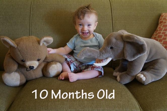 DSC08183 10 months