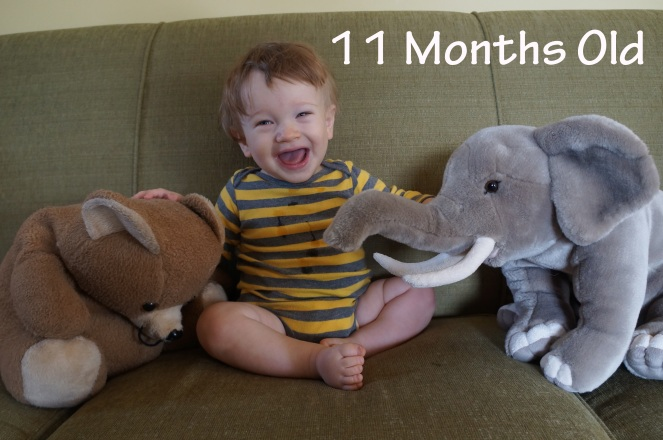 DSC09133 11 months