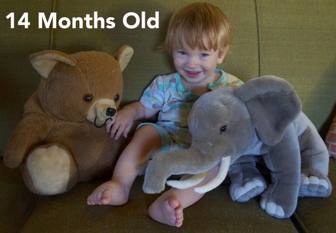 DSC00191 14 months