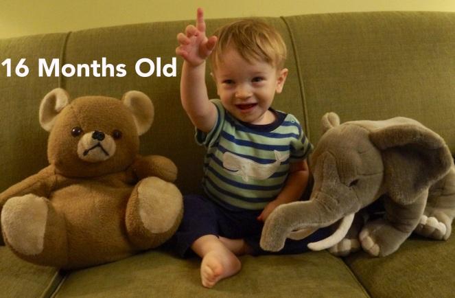 DSC00991 16 months