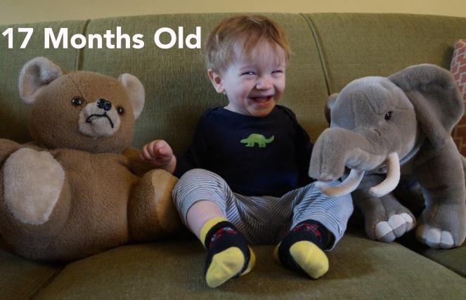 DSC01314 17 months