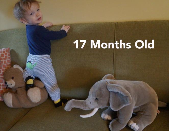 DSC01338 17 months funny