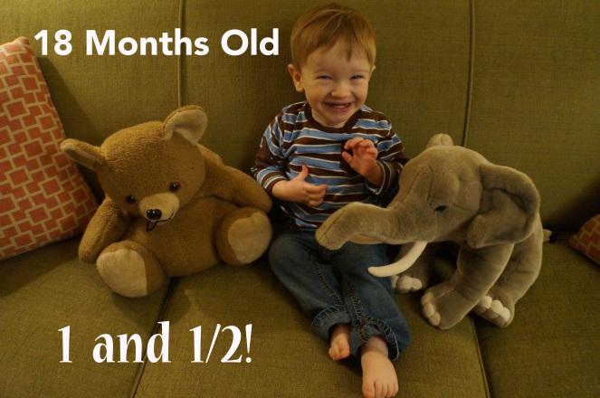 DSC01365 18 months