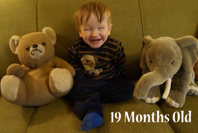 DSC01595 19 months