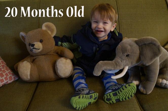 DSC01746 20 months