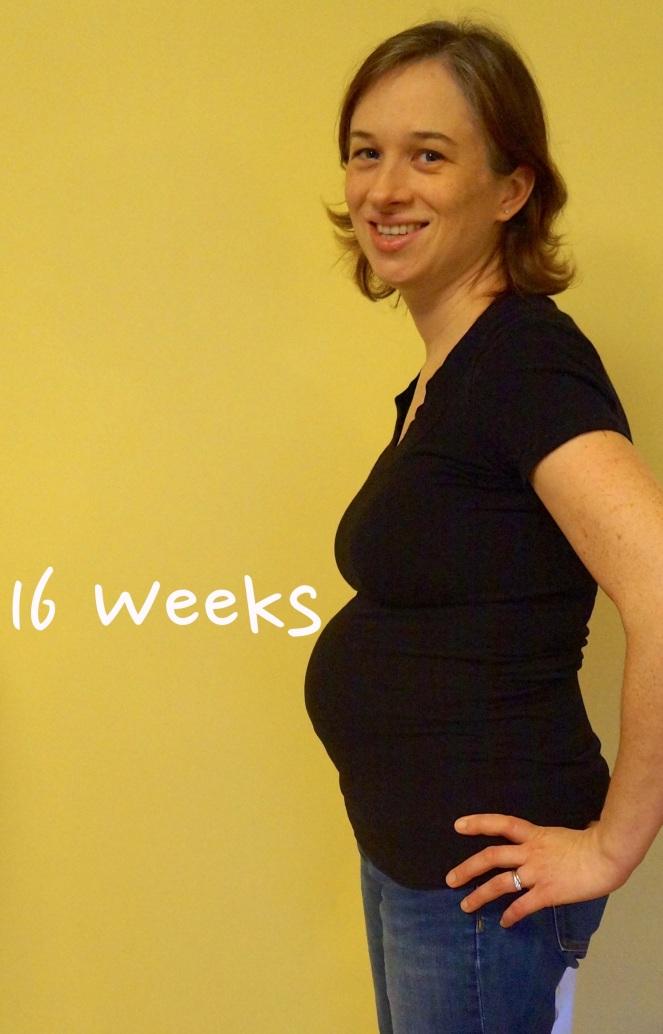 DSC03817 16 weeks