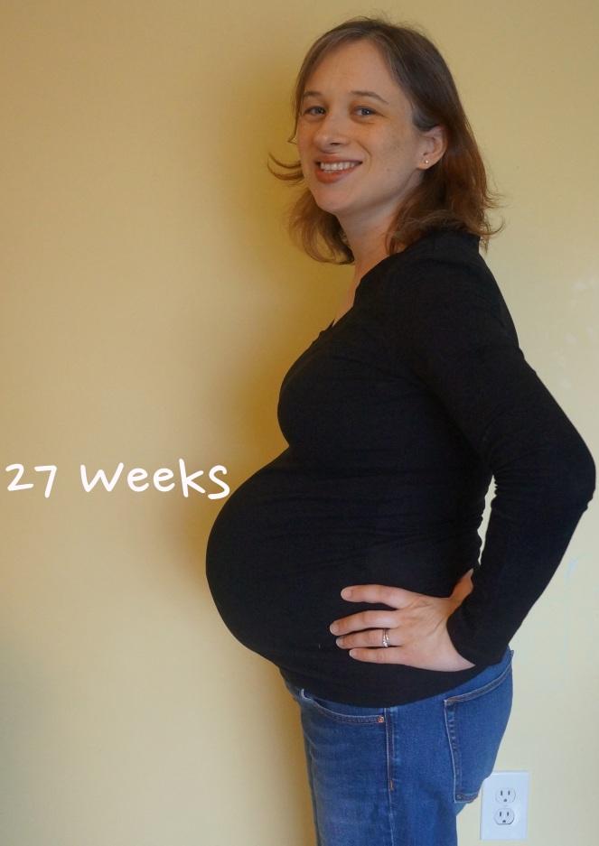 DSC04178 27 weeks