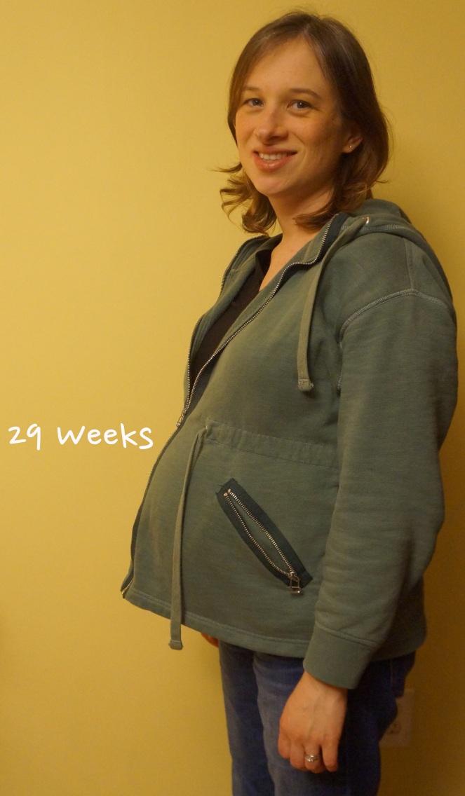 DSC04194 29 weeks