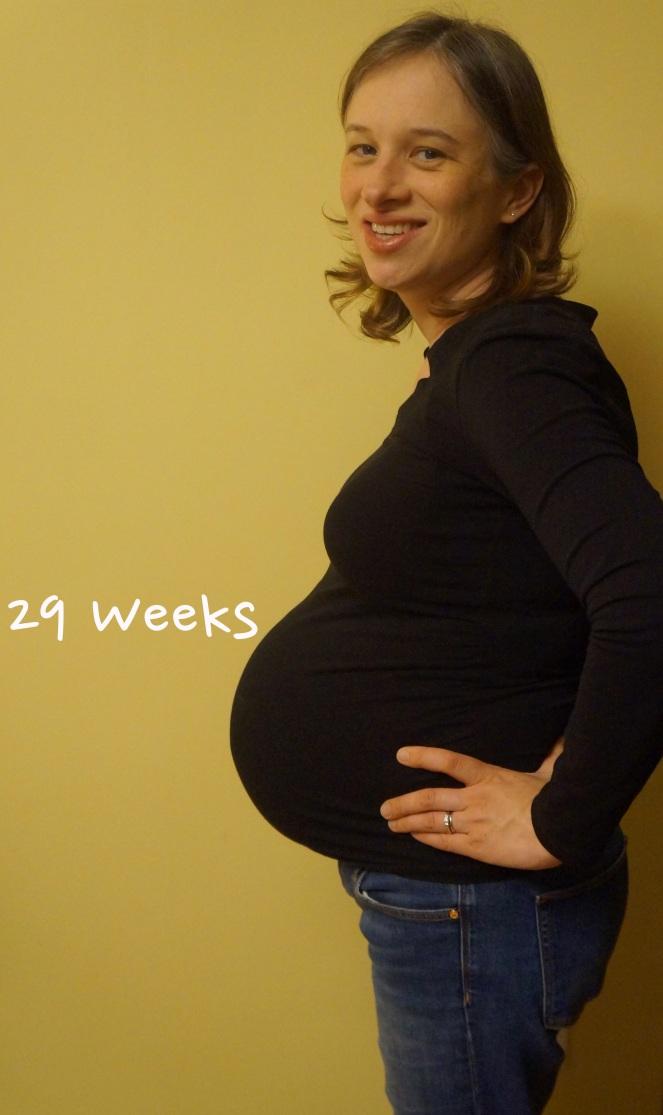 DSC04210 29 weeks