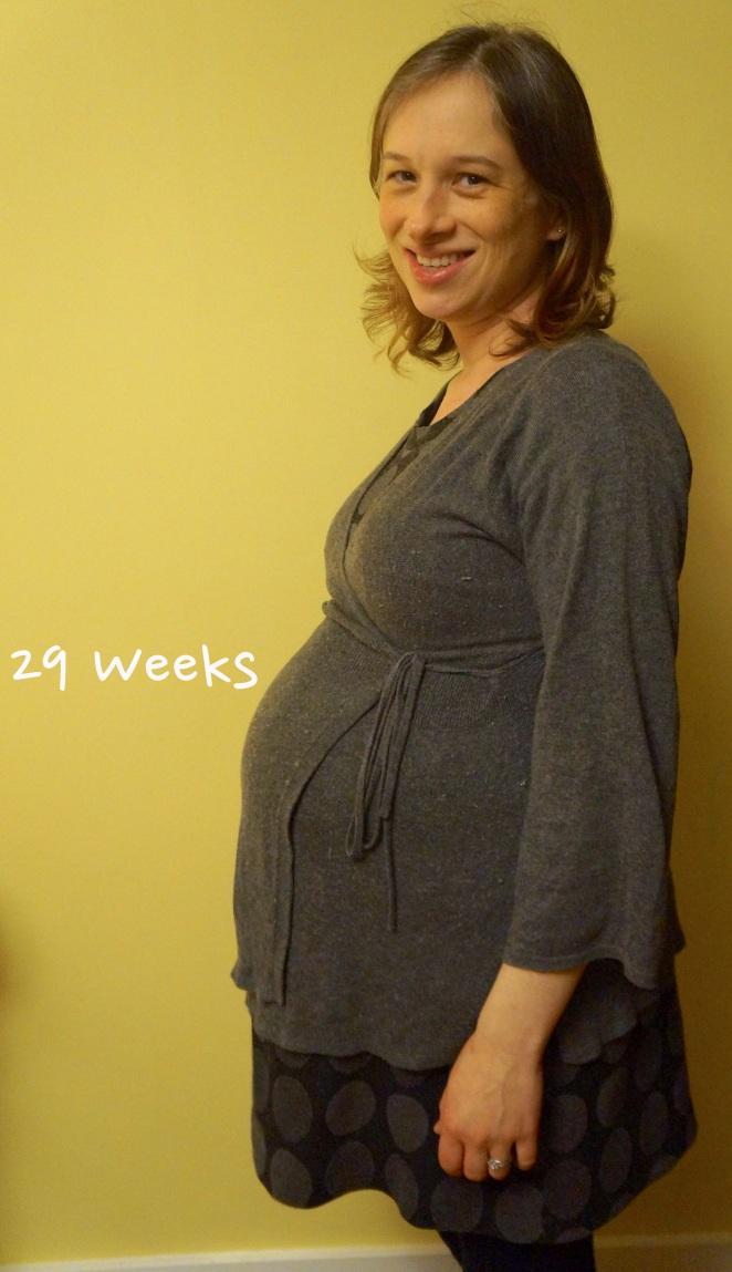 DSC04227 29 weeks