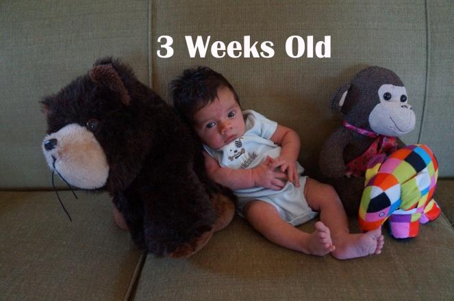 DSC05443 3 weeks