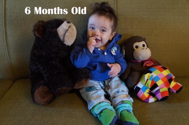 dsc06569-6-months