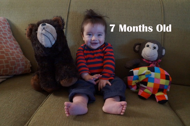 dsc06601-7-months
